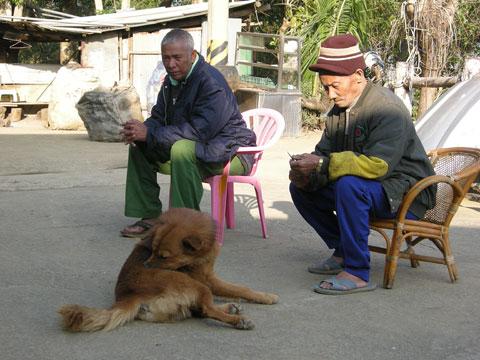 桃源國小101歲生日,願部落生生不息