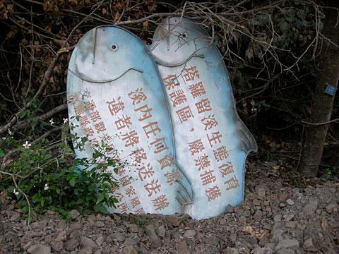 失落的塔羅留溪─高中村與興中國小1229