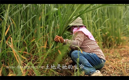 《我不只是一個人》作品5號:六龜農民產銷班(上)