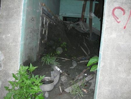 雜草、積水、廢土及廢棄物,水災當時的倉皇不安全都原封不動地保留在空屋內,也形成病媒孳生的溫床,對鄰近地區的衛生造成嚴重的威脅。(一)