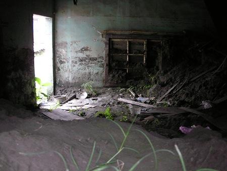 雜草、積水、廢土及廢棄物,水災當時的倉皇不安全都原封不動地保留在空屋內,也形成病媒孳生的溫床,對鄰近地區的衛生造成嚴重的威脅。(二)