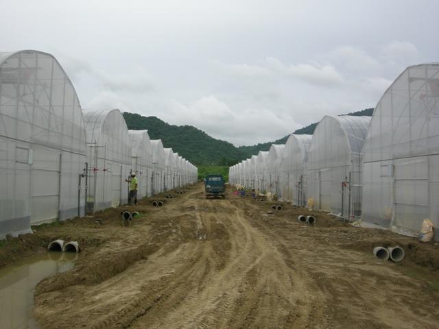 大愛生活系列(15)永齡慈善農場與居民的下一步
