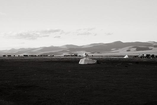 19 中國政府打算收回游牧區土地,將游牧藏民全部遷往結古鎮的集合住宅區住。一生只懂放牧的牧民,若被遷往城鎮居住,日後將如何維持生計,恐怕會是一樁大問題
