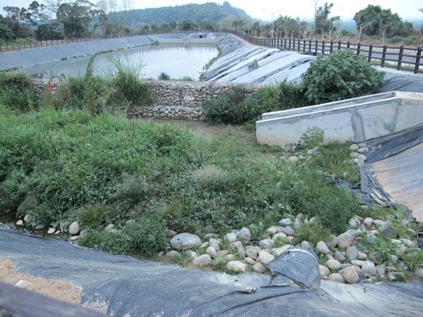 禮納里部落(13)汙水惡臭,大社居民抗議