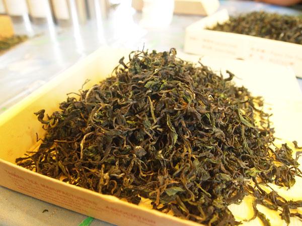 台灣南部無好茶?專訪新發茶師劉文華