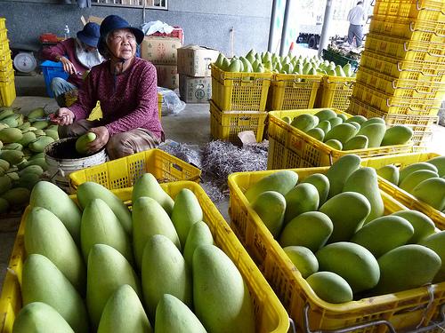 食物與小農(3)「喊出來,就可能做得到!」:六龜雲端市集的農業重建之路