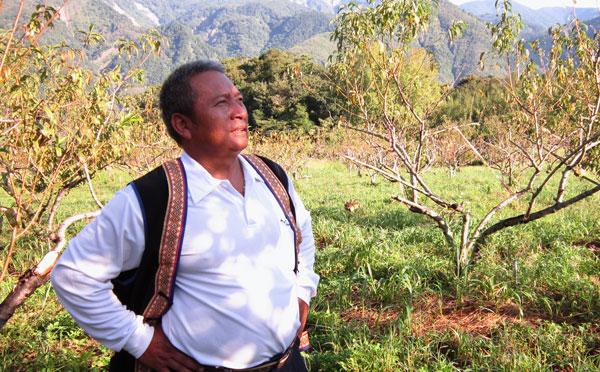 食物與小農(9)憑感覺,讓它自然─勤和平台上的Tama Ciang