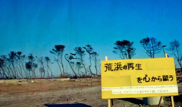 希望的黃色手帕大作戰─籲請支持日本仙台荒濱災區原地重建