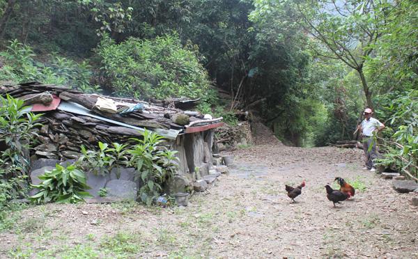 來義村的vuvu cama:我甘心樂意留在部落裡