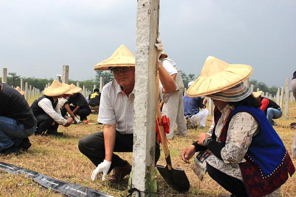 長治百合部落(33)從水果玉米到紅龍果  百合部落園區耕地重新出發