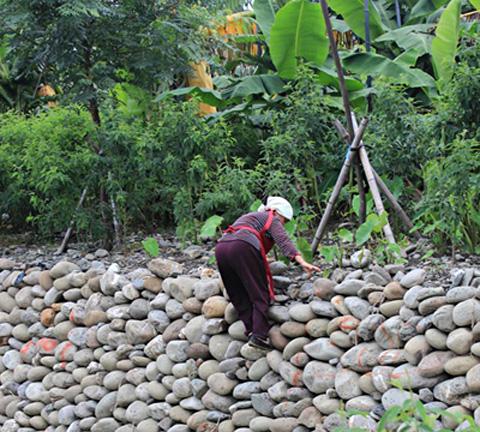 長治百合部落(34)希望種自己的作物、有自己的產業