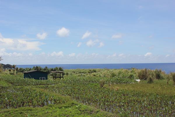 蘭嶼,颱風過後(2)無法融進國家制度的自治狀態