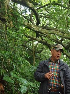 PB184917巒山部落的Aziman,背後的樹就是號稱會走路的白榕